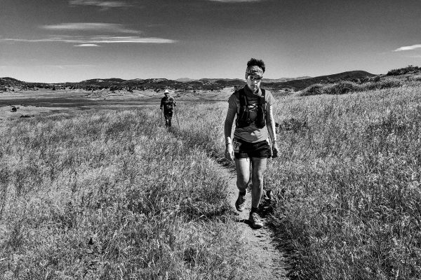 walking crabby at san diego 100